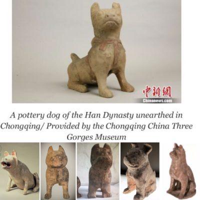Chongqing Dog History